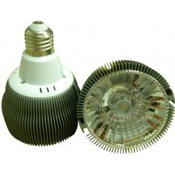 15W PAR30 LED Spot