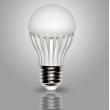 5W LED Global Bulb