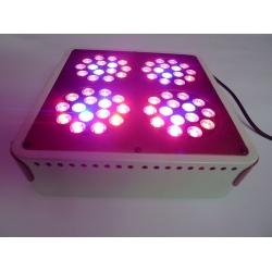 Apollo 4 LED Grow Lights